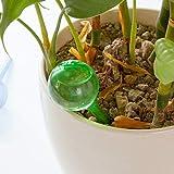 Strumenti di giardinaggio LGMIN 3 Pz a forma di palla a forma di annaffiatoio automatico dispositivo di innaffiatura Giardinaggio dispositivo di gocciolamento fiori dispositivo annaffiatoio in vaso, c