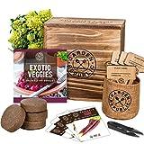 Indoor Vegetable Garden Seeds Starter Kit - 4 USDA Organic Heirloom Seeds