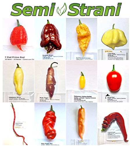 120 Graines Piment en 12 Variétés, Colleccion FANTASY: Primo Red, Pink Tiger, Rocoto, Thunder Mountain Longhorn, etc