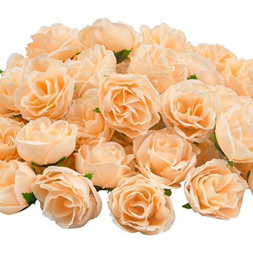 YOTINO 50pcs Künstliche Blumenköpfe Blütenköpfe Kunst Blumen Rosen Kunstseide Champagner Rosenkopf für Tischdekoration (Champagner)