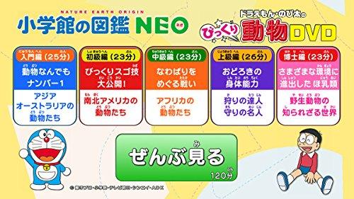 図鑑比較2020 一覧とおすすめ選び方ガイド 小学館neo/ライブ 7