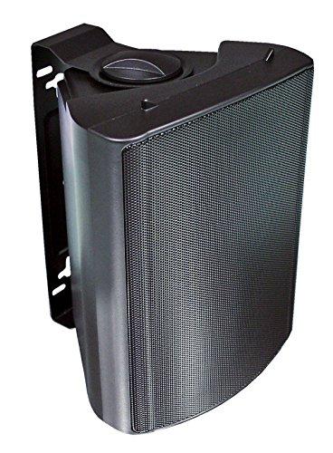 Visaton 50313 Lautsprecher WB 13, 100V+8 Ohm schwarz