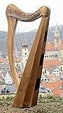 Harfe mit 27 Saiten incl Tasche und Ersatzsaiten C3-A6