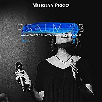 Psalm 23 (Live)