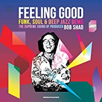 FEELING GOOD - FUNK, SOUL & DEEP JAZZ GEMS : THE SUPREME SOUND OF PRODUCER BOB SHAD [12 inch Analog]