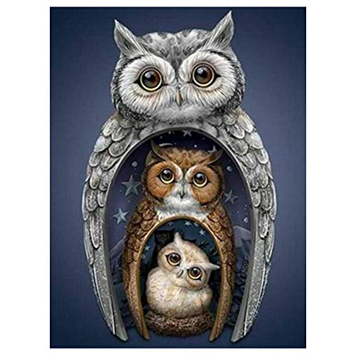Owl DIY 5D Diamond Painting Kit for Adult, Owl Embroidery Painting for Home Wall Decor Painting Arts Craft 18x14 inches