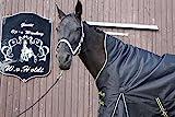 time4horses High Neck Übergangsdecke Regendecke Pferdedecke Winterdecke Outdoordecke 50gr. 1200Denir