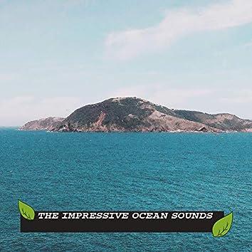 The Impressive Ocean Sounds