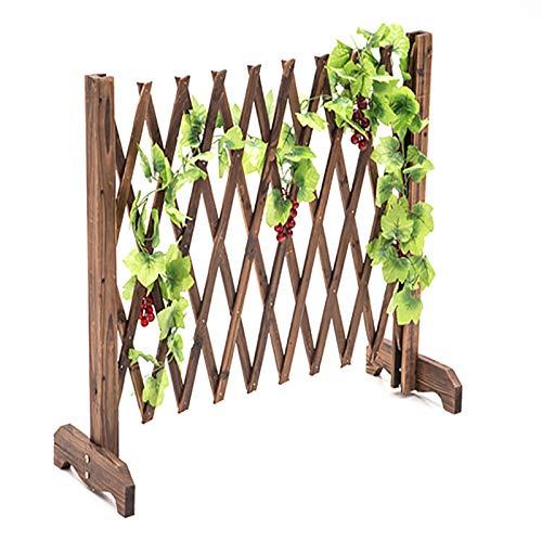 Expandierender Zaun, freistehender Garten Gitter und Heimdekoration, for Weihnachtsbaumzaun, Pflanzenwachsen Support-Bildschirm (Size : 70cm)