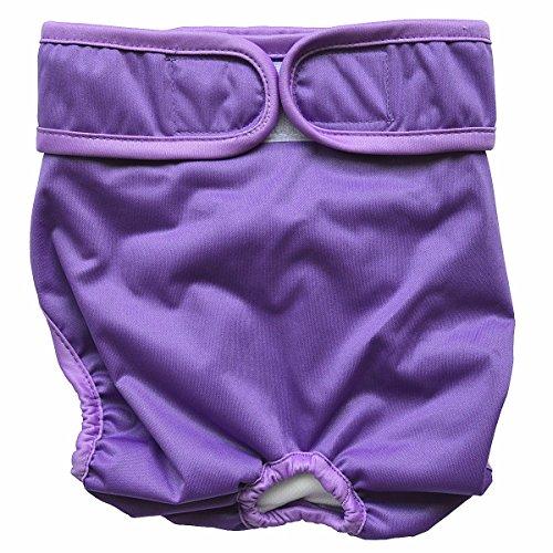 Hibaby Couches réutilisables lavables pour chien Femme (taille L 43,2 à 61 cm), Violet)