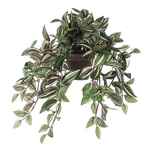 MICA Decorations Tradescantia Kunstpflanze, Polyester, grün, L 45 x B 25 cm, 4-Einheiten