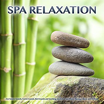 Spa Relaxation: Zen Nature Sounds, Forest Sounds, Bird Sounds and Soothing Music For Spa Music, Massage Music and Wellness