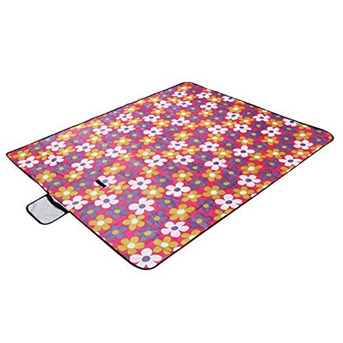 Phoenix Wonder Camping/Strand/Picknickwasserdichtes Oxford-Gewebe Blanket (150x180cm),F