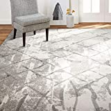 Home Dynamix Christian Siriano New York Roma Mauna Modern Geometric Area Rug, 5'3'x7'2' Gray