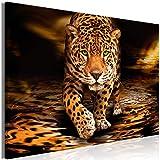 murando - Bilder Tiere 120x80 cm Vlies Leinwandbild 1 TLG