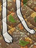 Feliciano Centurión