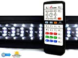 Finnex Planted+ 24/7 LED KLC Aquarium LED Light,  Automated Full Spectrum Fish Tank Light, 20 Inch