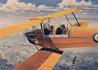 De Havilland DH82 Tiger Moth basic trainer biplane from the 1930s Poster Print by TriFocal CommunicationsStocktrek Images (17 x 11)