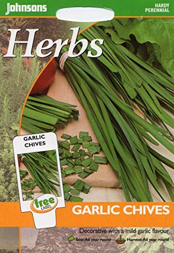 Portal Cool Johnsons Seeds - Paquet Pictorial - Herb - Ail Ciboulette - 250 graines