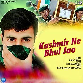 Kashmir Ne Bhul Jao - Single