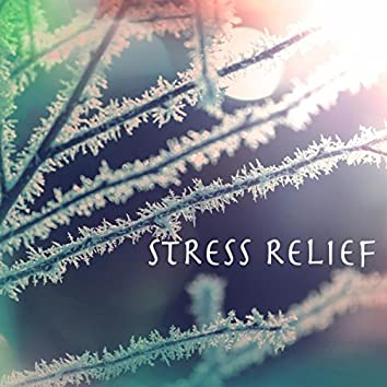 Stress Relief Therapy - Concentration Ambient Music