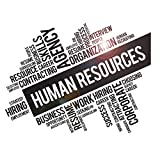 Vinyl Wall Decal Human Resources HR Agency Department Office Words Idea Stickers Mural Large Decor (ig6247) Black