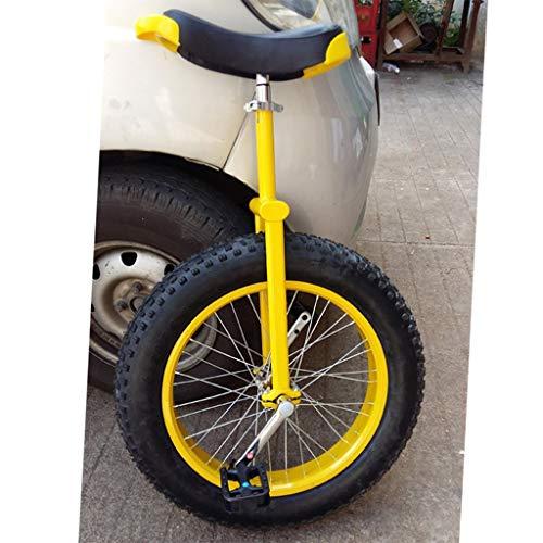 OFFA 20 24-Zoll-Rad Einrad for Kinder Erwachsene Anfänger Teen, Einräder Comfort-Sattel-Sitz Anti-Rutsch-Extra Dicke Reifen, Außen Gleichgewicht Gelände Radfahren Fahrräder Einräder