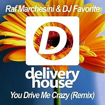You Drive Me Crazy (DJ Kharitonov Remix)