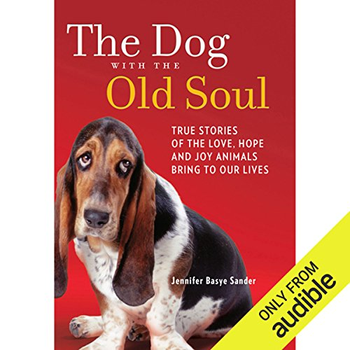The Dog with the Old Soul audiobook cover art
