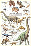 Educational - Bildung Dinosaurier - Dinosaurs - Jurassic