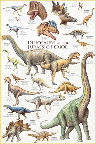Educational - Bildung Dinosaurier - Dinosaurs - Jurassic Period Bildungsposter Plakat Druck - Maxiposter Version in Englisch - Grösse 61x91,5 cm