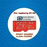 ARCADORA 256G Micro SD 14,000回以上のゲーム Retropie 4.6 エミュレーションステーション Raspberry Pi 4 3D Boxart ビデオプレビュー プラグアンドプレイ用
