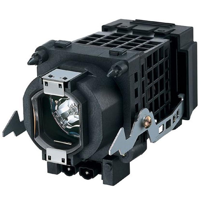 恋人はっきりしないサンプルソニー F93087500 高品質互換交換用 Rptv ランプ電球 ハウジング付き