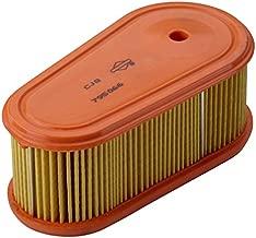 Briggs & Stratton Genuine OEM 795066 (2 Pack) Oval Air Filter Cartridge