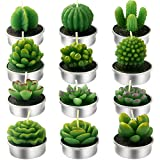 Bivisen 12Pcs Cactus Tealight Candles, Delicate Handmade Succulent Cactus Candles Kit Perfect for Home Decor Birthday Party Valentine's Day Wedding Spa(Style A)