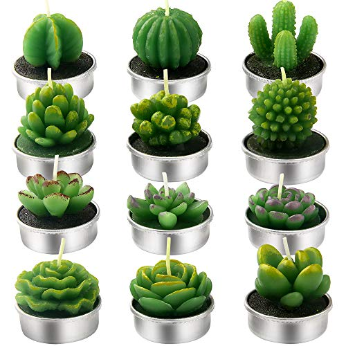 Bivisen 12Pcs Cactus Tealight Candles, Delicate Handmade Succulent Cactus Candles Kit Perfect for Home Decor Birthday Party Valentine's Day Wedding Spa