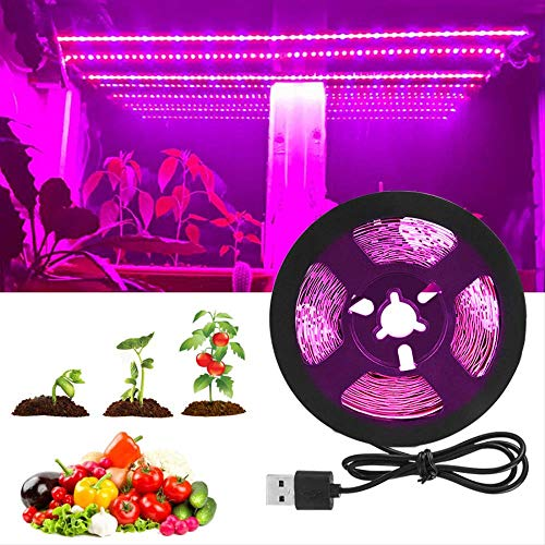 Maimoji Plante Lampe UV Interieur Grow Light Full Spectrum 5v LED Lampe De Croissance Fitolampy 2835 Dideo Tape Phyto Lamps for Indoor Plants Greenhouse 3m Non-étanche