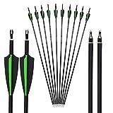 AMEYXGS 12 Piezas Flechas de Fibra de Carbono 30 Pulgadas Caza Objetivo de Práctica Fiechas Spine 500 para Arco Recurvo Arco Compuesto Arco Largo (Verde+Negro)