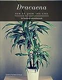Dracaena: How to grow and care