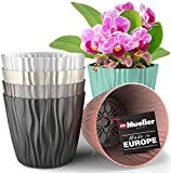 Mueller Plant and Flower Pot 6/1 Set, Heavy Duty 6 Inch European Made Stylish...