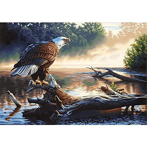 Xpboao Pintar por números - Águila Calva de río Animal - Pintura de Arte Moderno - Kit de Pintura de Bricolaje Adecuado para Adultos y Principiantes - 40x50cm - Sin Marco
