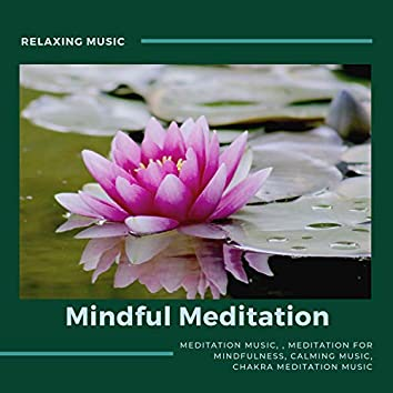 Mindful Meditation (Meditation For Mindfulness, Meditation Music, Relaxing Music, Calming Music, Chakra Meditation Music)