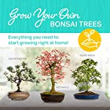 Zoom IMG-1 plant theatre bonsai trio kit