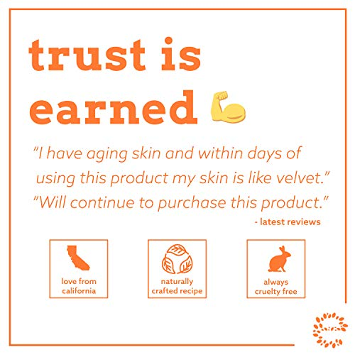 Eve Hansen Vitamin C Toner for face | 8 oz Hydrating Facial Toner & PH Balancing Pore Minimizer with Anti Aging Aloe, Citric Acid & Tea Tree | Skin & Face Toner for All Skin Types & Even, Clear Skin