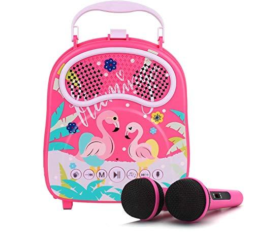 Karaoke Machine for Kids Girls Boys with 2 Microphones Bluetooth Children Karaoke Singing Machine Toddler Karaoke Speaker with Voice Changer for Birthday Gift