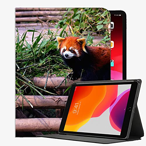 Estuche para el Nuevo iPad 10.2 2020/2019 - Cubierta de la Caja de generación del 8vo / séptima de iPad, Caja de la Cubierta Delgada de la Caja del
