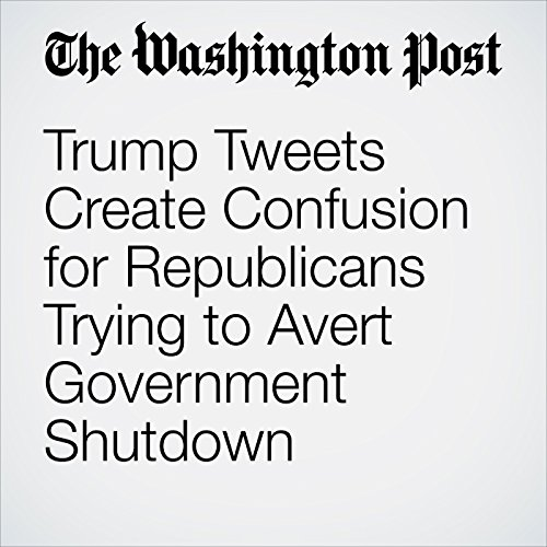 Trump Tweets Create Confusion for Republicans Trying to Avert Government Shutdown copertina