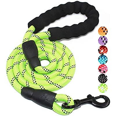 5 FT Strong Dog Leash with Comfortable Padded H...
