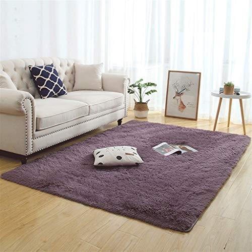 Silky Fluffy Carpet Moderno Hogar Decoración Larga Peluche Shaggy Alfombra Play Mats Sofá Sofá Living Dormitorio Cama Mat Balcón Alfombras (Color : E, Size : 100x160cm)