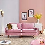 DADEA Sofa 2 Sitzer, Kippsofa Sofa Samt, Polstersofa mit Armlehnen im modernen Design, für kleine Wohnung Gästezimmer Jugendzimmer